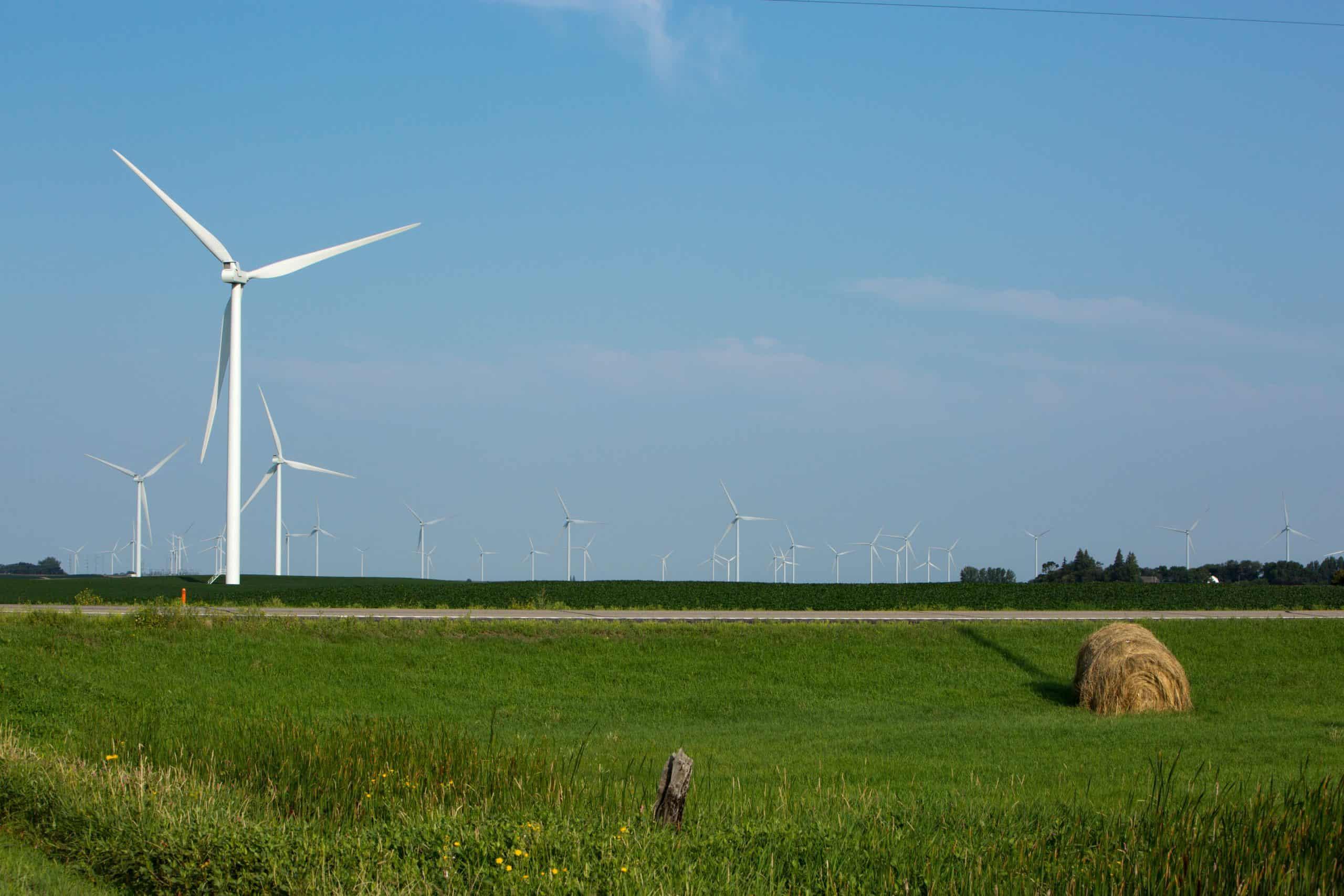 wind turbine field 1.1